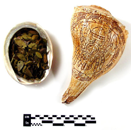 Replica Shell Dipper & Roasted Yaupon Leaves
